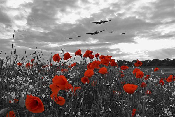 Warbirds Remembrance - Selective  Canvas print by J Biggadike
