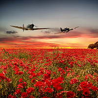 Buy canvas prints of Battle of Britain Warriors by J Biggadike