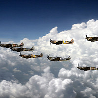 Buy canvas prints of Spitfire Collection by J Biggadike