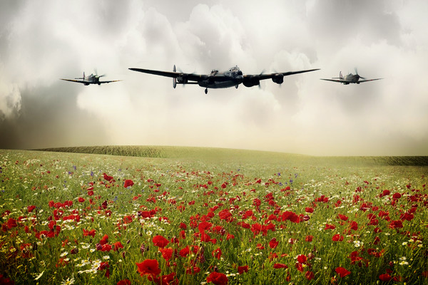 Memorial Flight Canvas Print by J Biggadike