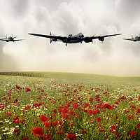 Buy canvas prints of Memorial Flight by J Biggadike