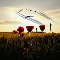 Buy canvas prints of XH558 Red Arrows Poppy Field by J Biggadike
