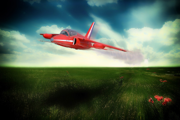 Red Gnat In low Framed Mounted Print by J Biggadike