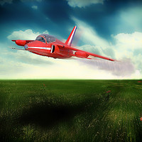 Buy canvas prints of Red Gnat In low by J Biggadike