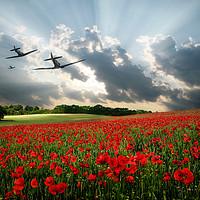Buy canvas prints of Spitfires - The Last Mission by J Biggadike