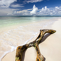 Buy canvas prints of  Saona Beach by R K Photography