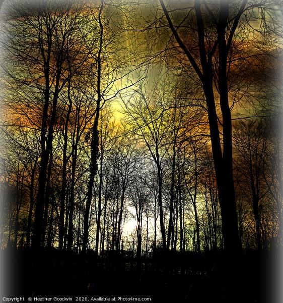 Nightfall Framed Print by Heather Goodwin