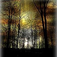 Buy canvas prints of Nightfall by Heather Goodwin