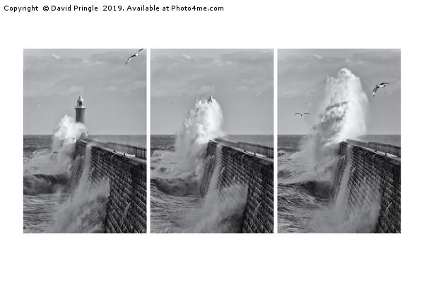Tynemouth Pier Triptych Canvas print by David Pringle