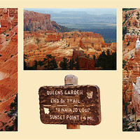 Buy canvas prints of Bryce Canyon by David Pringle