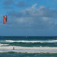 Buy canvas prints of Kite Surfer by Bec Trinick