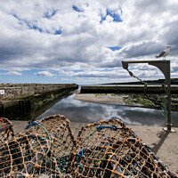 Buy canvas prints of St Andrews harbour by alan bain