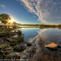 Buy canvas prints of Llyn Trawsfynydd into the sun by Rory Trappe