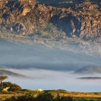 Buy canvas prints of Cydnerth near Llan Ffestiniog by Rory Trappe