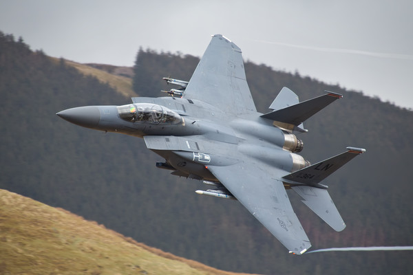 F15 Eagle Canvas print by Rory Trappe