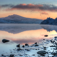 Buy canvas prints of Tegid shore by Rory Trappe