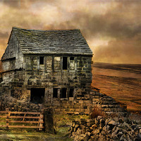 Buy canvas prints of Derelict Cottage by Irene Burdell