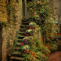Buy canvas prints of The Steps by Irene Burdell