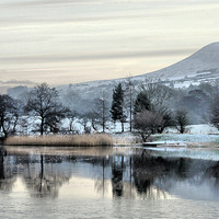 Buy canvas prints of Pendle View by Irene Burdell