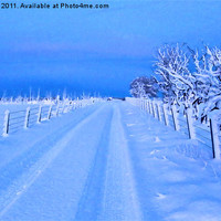 Buy canvas prints of Snow A Road To Nowhere by James Hogarth