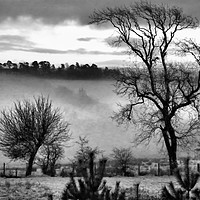 Buy canvas prints of Ayrshire Morning Mist by James Hogarth