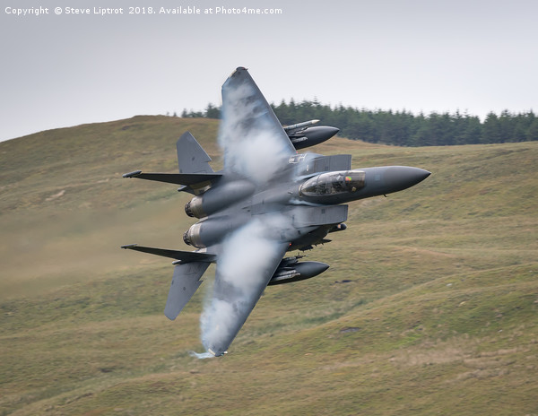 McDonnell Douglas F-15E 492d 'The Madhatters'  Canvas print by Steve Liptrot