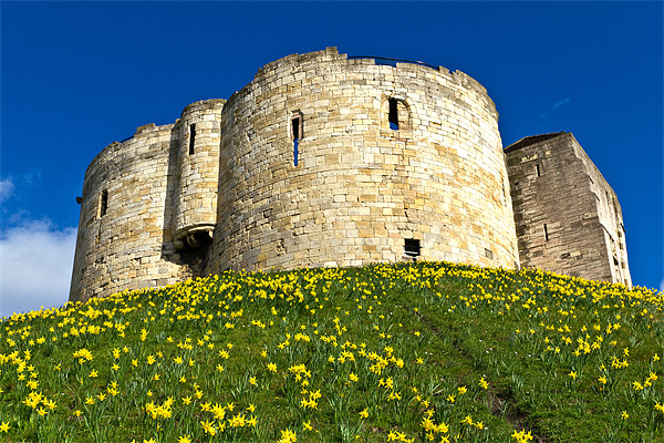 York Castle Canvas print by Kevin Tate