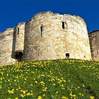 Buy canvas prints of York Castle by Kevin Tate