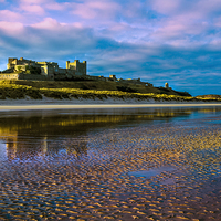 Buy canvas prints of Bamburgh Castle Evening Sun by Kevin Tate