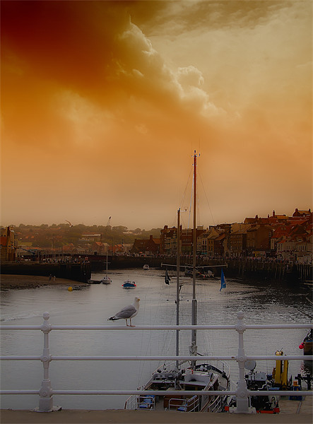 whitby harbour Canvas print by Northeast Images Daniel Dent