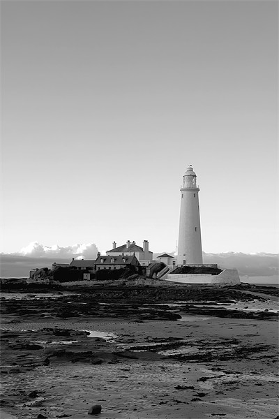 St Mary`s Lighthouse b&w. Canvas Print by Northeast Images Daniel Dent