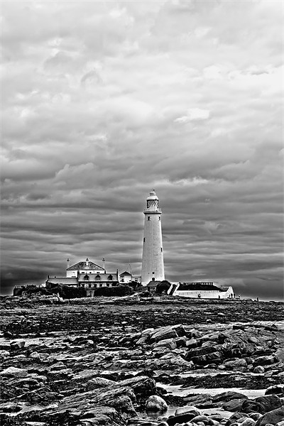 st mary`s lighthouse. Canvas Print by Northeast Images Daniel Dent