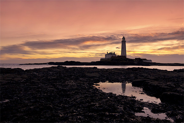 St Mary`s lighthouse Canvas print by Northeast Images Daniel Dent