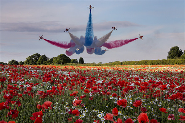 Red Arrows Canvas print by Northeast Images Daniel Dent