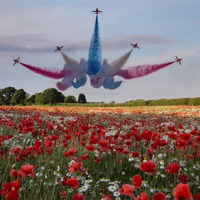 Buy canvas prints of Red Arrows by Northeast Images Daniel Dent