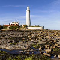 Buy canvas prints of  St Mary`s Lighthouse by Northeast Imag Dent