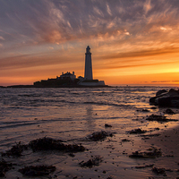 Buy canvas prints of  St Mary`s Lighthouse by Northeast Images