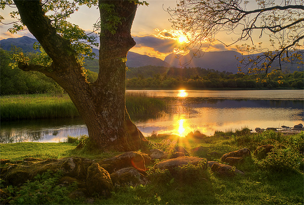 Last Light At Elterwater Canvas print by Jason Connolly