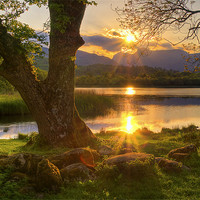 Buy canvas prints of Last Light At Elterwater by Jason Connolly