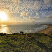 Buy canvas prints of Rhossili Sunset by Jason Connolly
