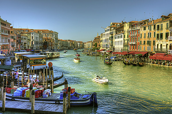 Life in Venice Canvas print by Tom Gomez