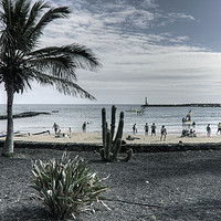 Buy canvas prints of Playa Las Cucharas by Tom Gomez