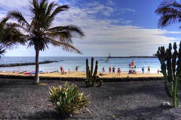 Las Cucharas Beach Acrylic by Tom Gomez