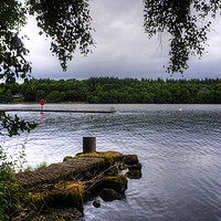 Buy canvas prints of Lower Lough Erne by Tom Gomez