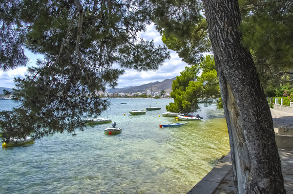 Boats At Pine Walk Puerto Pollensa Canvas print by Gerry Greer