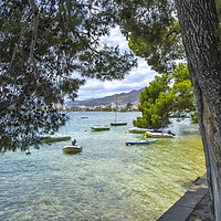 Buy canvas prints of Boats At Pine Walk Puerto Pollensa by Gerry Greer