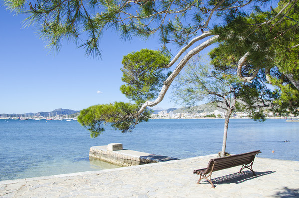 Rest On The Pine Walk in Puerto Pollensa Canvas print by Gerry Greer
