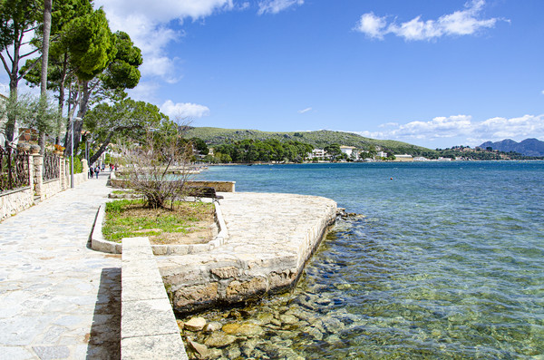 Resting Point On The Pine Walk Puerto Pollensa Canvas print by Gerry Greer