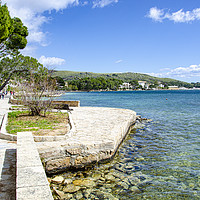 Buy canvas prints of Resting Point On The Pine Walk Puerto Pollensa by Gerry Greer