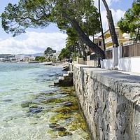 Buy canvas prints of Pine Walk Sea Wall In Puerto Pollensa by Gerry Greer